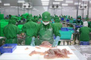 Tập đoàn Sao Mai dự chi 330 tỷ nâng sở hữu tại IDI lên 66%