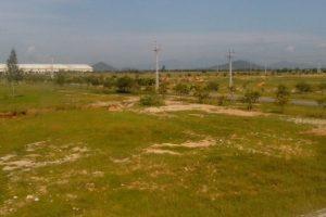 Thủ tướng đồng ý chuyển hơn 200 ha đất trồng lúa sang làm dự án