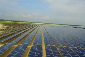 Điện Gia Lai sắp đưa vào hoạt động 2 nhà máy điện mặt trời tại Long An và Bình Thuận