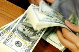Tỷ giá trung tâm giảm, đồng USD trong ngân hàng giảm mạnh phiên cuối năm