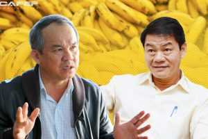 """Thaco sở hữu 35% cổ phần, """"bơm"""" hơn 10 nghìn tỷ vực dậy công ty nông nghiệp của Bầu Đức"""