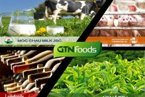 GTNfoods khước từ đề nghị của Vinamilk