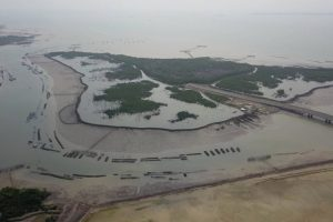 Đề xuất đầu tư Trung tâm logistics và cảng Cái Mép Hạ hơn 30.600 tỷ đồng