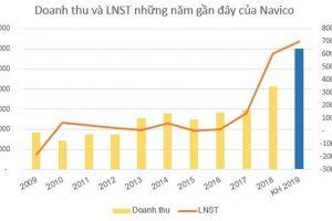 Thủy sản Nam Việt – Navico bứt tốc lợi nhuận quý I, dự chia cổ tức 20%