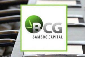 Cổ phiếu BCG vào diện cảnh báo từ ngày 22/4