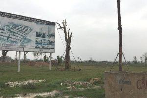 Ngàn hecta đất dự án bỏ hoang tại Mê Linh, Bình Chánh: Chỉ còn nỗi khổ dân cày