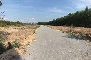 TP. HCM: 10 dự án phân lô bán nền trái phép tại quận 12