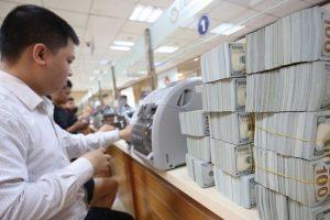 Dự trữ ngoại hối 65 tỷ USD đủ để 'cân' rủi ro tỷ giá?