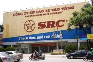 """Hưng Thịnh Phát và """"trận chiến"""" thâu tóm đất Cao su Sao Vàng"""
