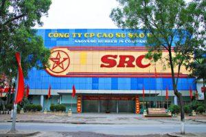 Lộ diện 4 nhà đầu tư nhòm ngó 4,2 triệu cổ phiếu SRC do Vinachem chào bán