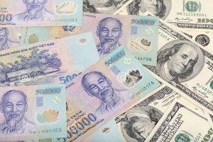 Dự báo VND sẽ không mất giá quá mạnh trong năm 2019