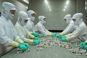 Thủy sản Minh Phú: Loạt thành viên HĐQT đăng ký bán hơn 10 triệu cổ phiếu cho nhà đầu tư chiến lược