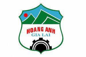 Mua thành công 6 triệu cổ phiếu HNG, Hưng Thắng Lợi Gia Lai đã nâng vốn sở hữu lên 10.49% tại HAGL Agrico