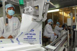 Lãi ròng TTC Sugar giảm 42% nửa đầu 2019
