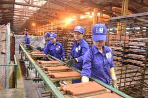 Lãi trước thuế của Viglacera Đông Triều giảm 60% trong nửa đầu 2019