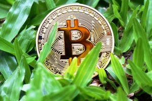 Giá bitcoin hôm nay 8/7: Sắc xanh trong phiên đầu tuần