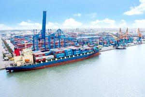 Cảng Đình Vũ (DVP) báo lãi trước thuế quý 2 cao kỷ lục
