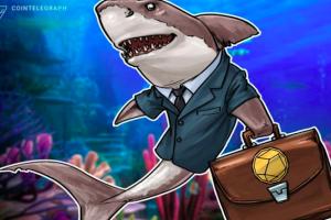 Giá tiền ảo hôm nay (16/8): 'Cá mập' liên tục gom vào Bitcoin những ngày gần đây