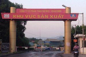 Quảng Ninh quyết định thu hồi đất của Than Núi Béo – Tập đoàn Vinacomin