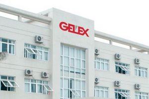 Gelex: Cổ đông lớn nhất mua ròng gần 3,9 triệu cổ phiếu, tăng sở hữu lên trên 16%