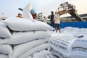 Xuất khẩu gạo đạt 1,73 tỷ USD trong 7 tháng đầu năm