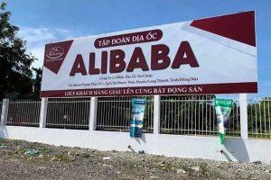 Vụ Alibaba: 'Nhà đầu tư quá xem thường pháp luật, cứ nghĩ lướt sóng là nghề dễ kiếm tiền'
