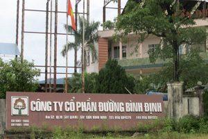 26 tỷ đồng nợ thuế của Đường Bình Định vẫn chưa thể thu hồi