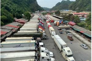 """Hàng trăm container nông sản """"ì ạch"""" chờ thông quan"""