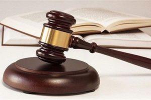 Công bố thông tin không đúng thời hạn, Alphanam E&C bị xử phạt