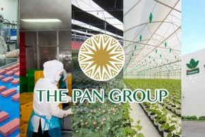 PAN Group chuẩn bị phát hành hơn 43,2 triệu cổ phiếu thưởng