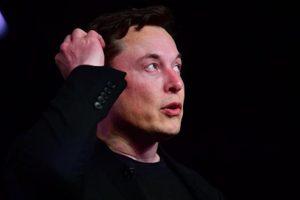 Một tài khoản nắm giữ hơn 2 tỷ USD tiền Dogecoin, tỷ phú Elon Musk được réo tên