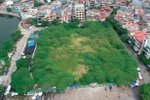 8.000m2 đất 'vàng' bị bỏ hoang ở Hải Dương đổi chủ có đổi vận?