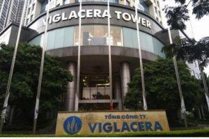 9 tháng, Viglacera lãi trước thuế 692 tỷ, hoàn thành 93% kế hoạch năm