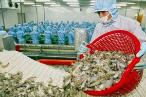 Xuất khẩu thủy sản có thể đạt 8,4 tỷ USD
