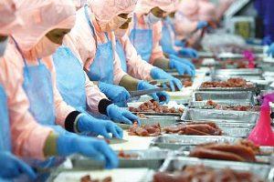 Diễn biến nhóm thủy sản quý III/2020: Kinh doanh chật vật, cổ phiếu phân hóa