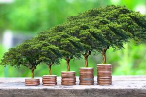 Lịch trả cổ tức đợt giữa tháng 11/2020: Cao nhất 40% tiền mặt