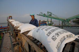 """Các doanh nghiệp ngành gạo """"thăng hoa"""" trong quý III/2020"""
