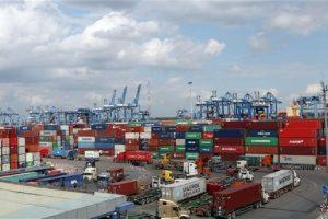 Phó Thủ tướng yêu cầu xử lý tình trạng tăng giá thuê tàu và container