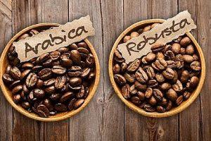 Xuất khẩu cà phê tháng 2/2021: Giá cà phê toàn cầu tăng mạnh
