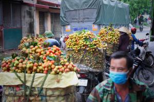 Bắc Giang tổ chức hội nghị trực tuyến tiêu thụ vải thiều
