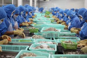 Xuất khẩu thủy sản sang Nga tăng mạnh