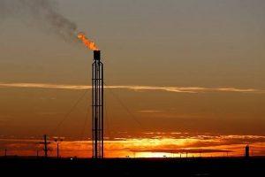 Giá gas hôm nay 20/8/2021: Giữ vững xu hướng giảm