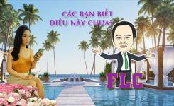 ĐỪNG BAO GIỜ lướt sóng FLC nếu chưa biết những điều này !